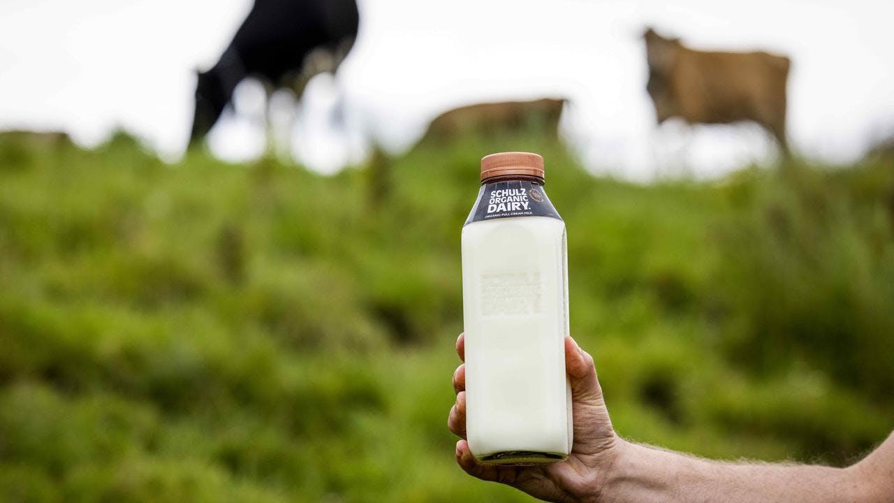 Shultz Organic Milk