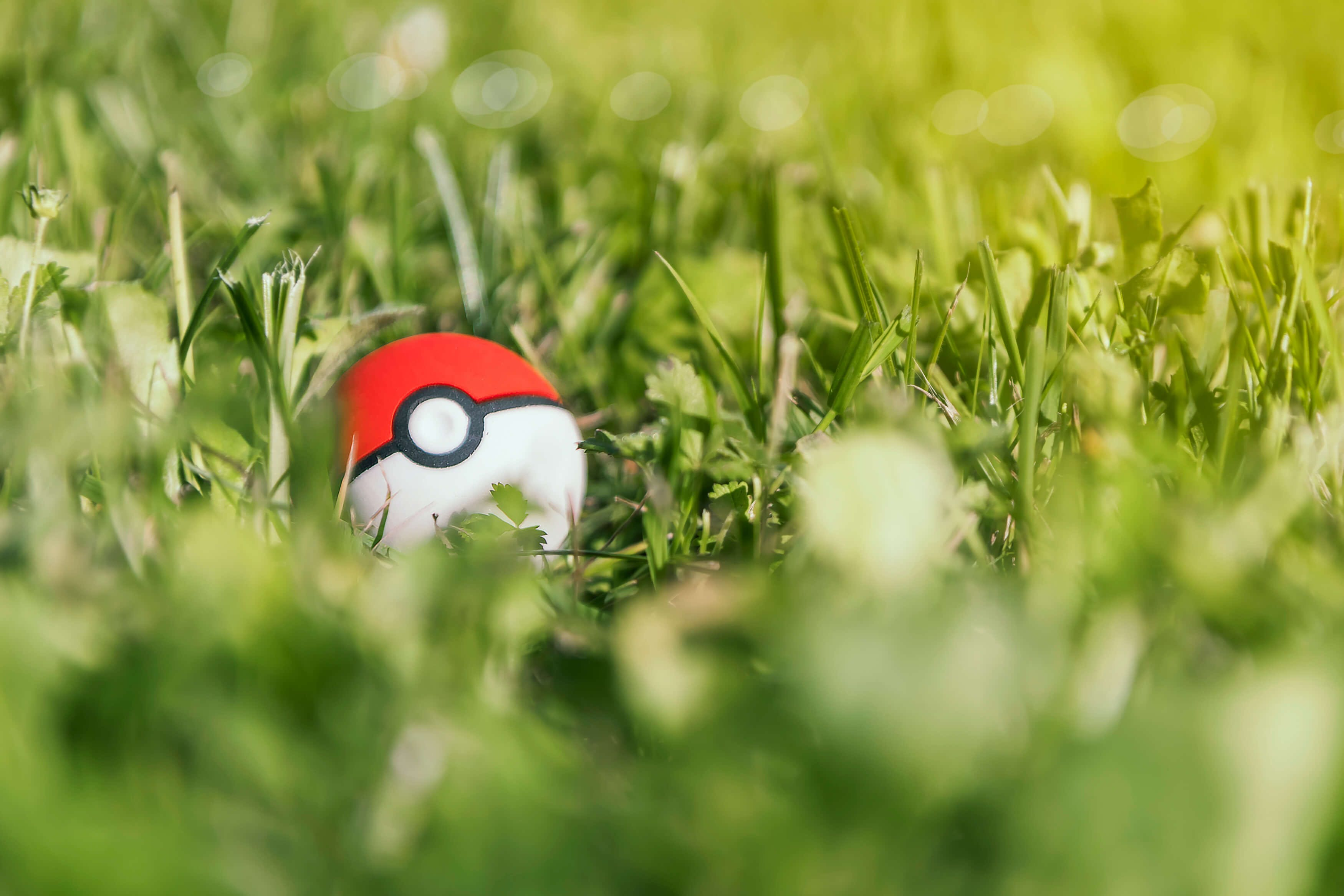 A pokeball sitting in a field of grass.