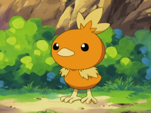 the starter Torchic is one the cutest pokemon from it's generation