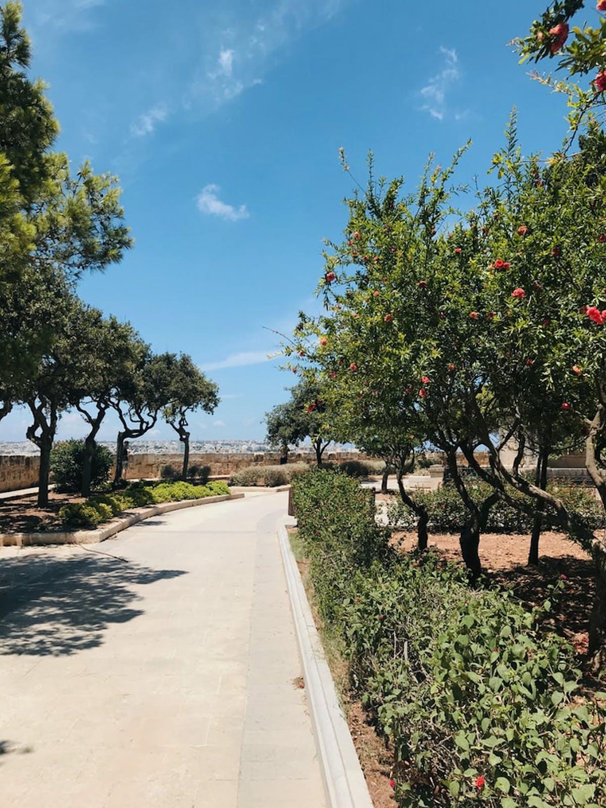 Upper Barcca Gardens