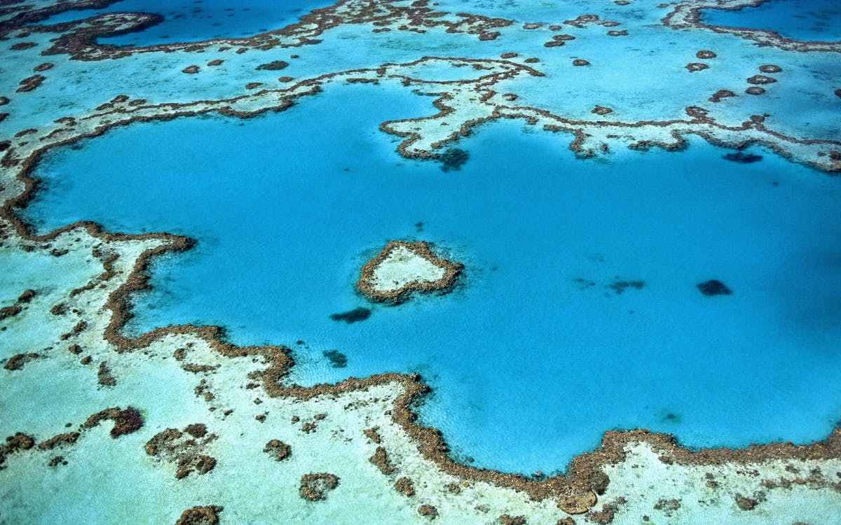Australia's Great Barrier Reef, seen from the sky