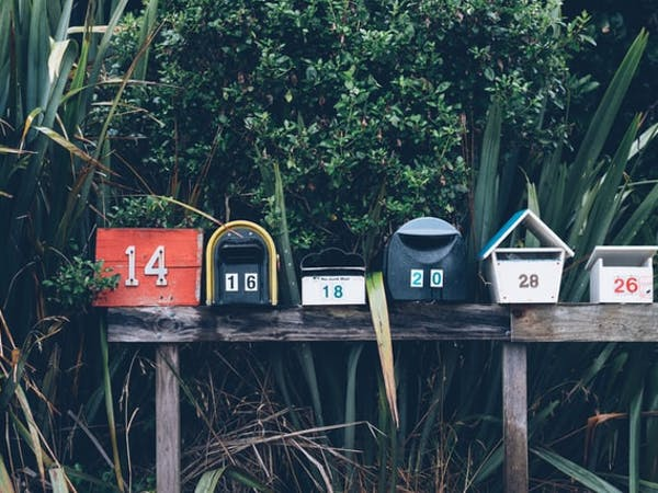Six letterboxes on a wooden fence, backed by a selection of flax and green shrubbery. Taken in Muriwai, New Zealand