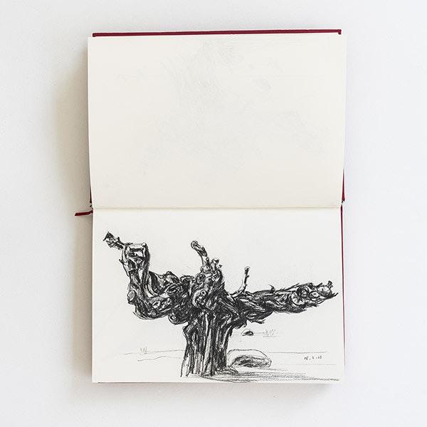 Drawings 01