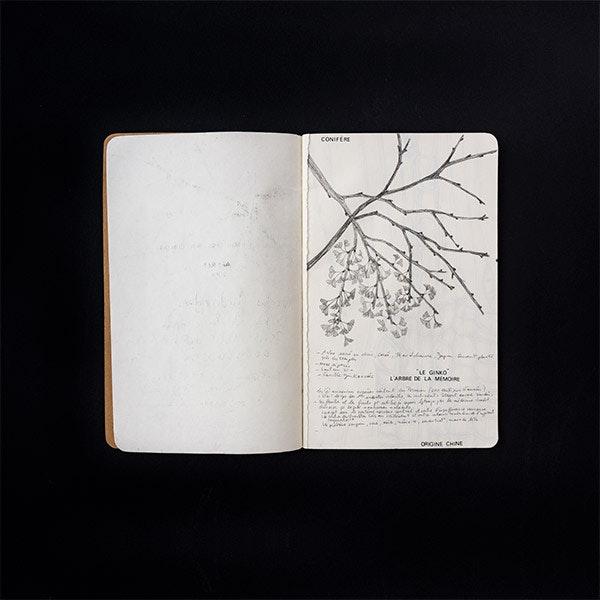 Drawings 09