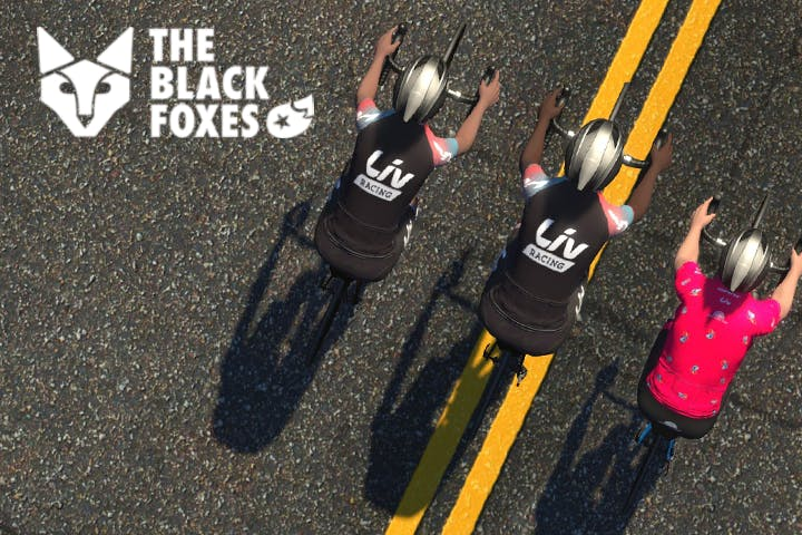 The Black Foxes